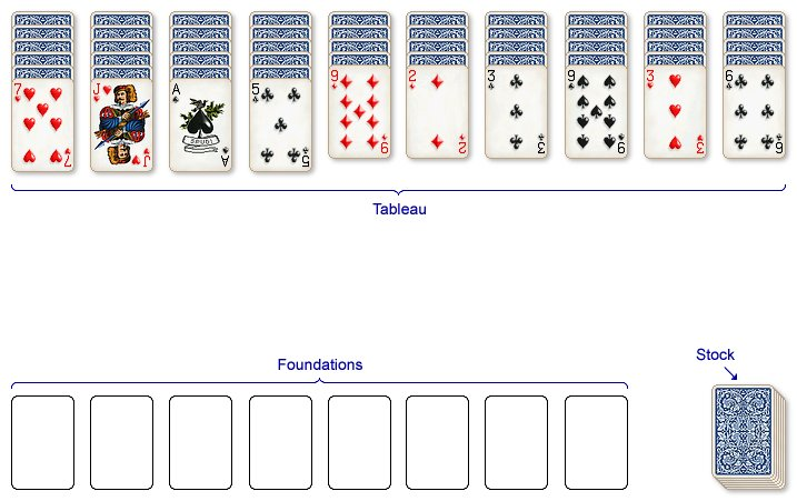 Spider Card Layout